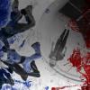 <b>269 - Com.presse : Championnat de France de vol en soufflerie à Weembi Lille</b>
